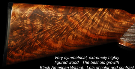 Exhibition Black American Walnut